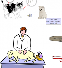 chinees-huisdieren
