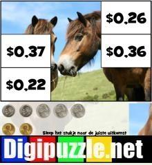 amerikaanse-dollar