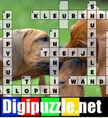 honden-kruiswoordraadsel